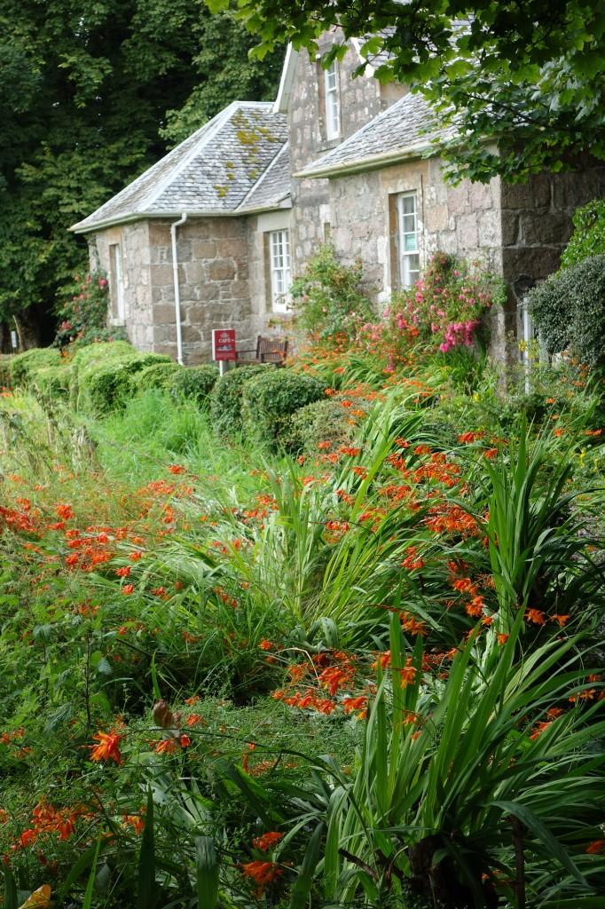 Garden on Iona